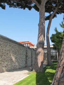 Villa Arson jardin est