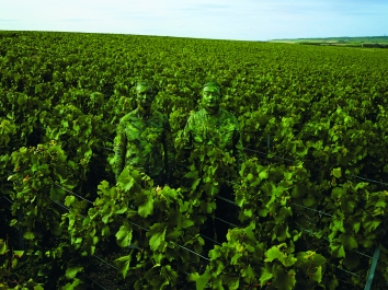 liu_bolin_x_ruinart_vineyard